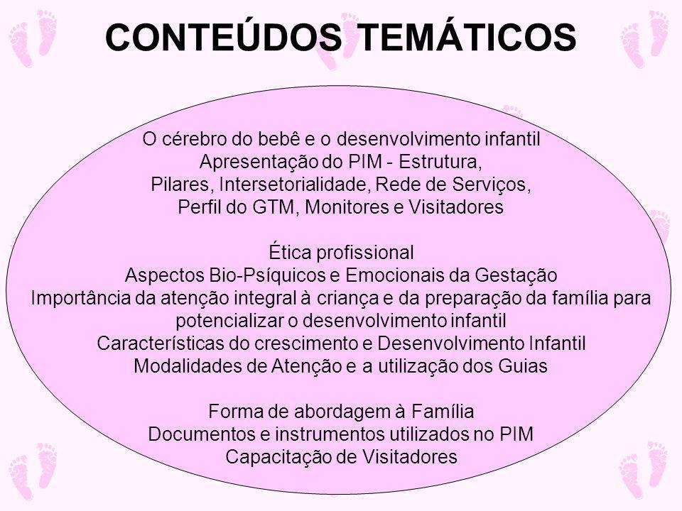CONTEÚDOS TEMÁTICOS O cérebro do bebê e o desenvolvimento infantil