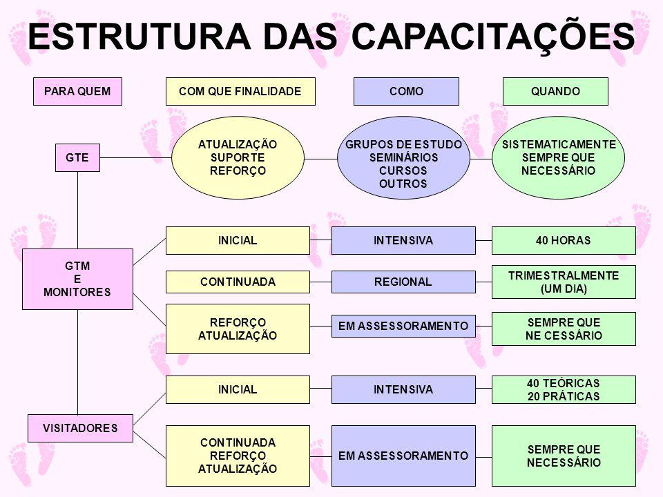 ESTRUTURA DAS CAPACITAÇÕES