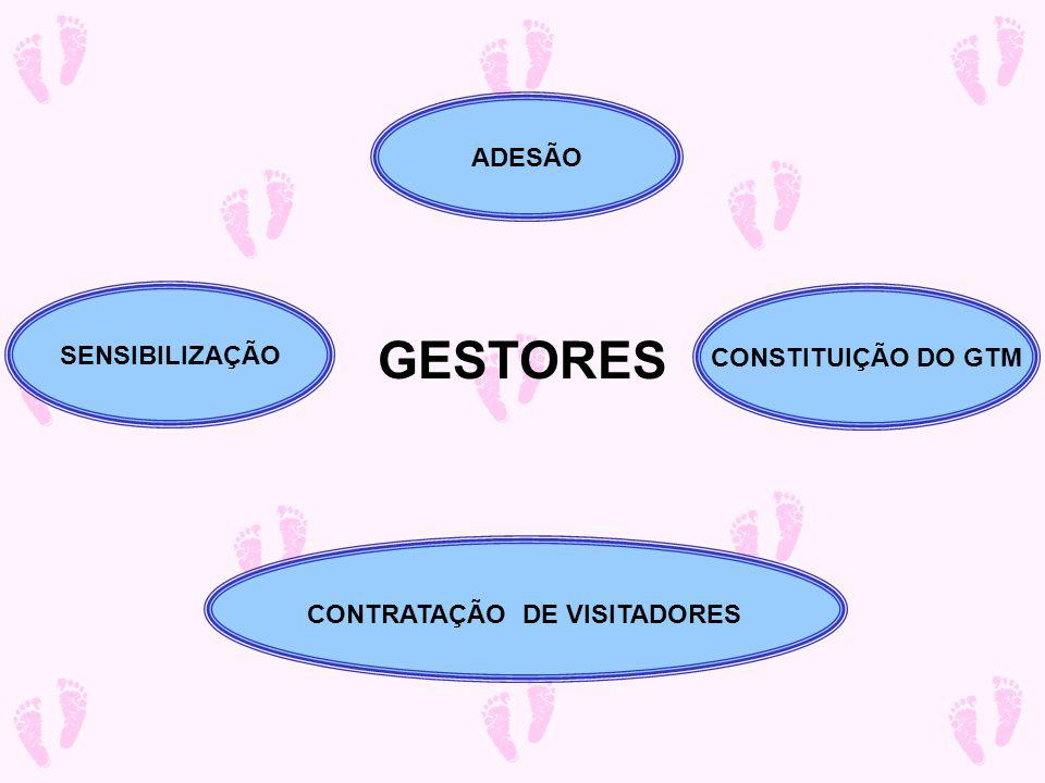 GESTORES ADESÃO SENSIBILIZAÇÃO CONSTITUIÇÃO DO GTM
