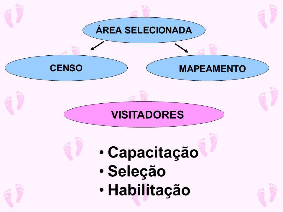 Capacitação Seleção Habilitação VISITADORES ÁREA SELECIONADA CENSO