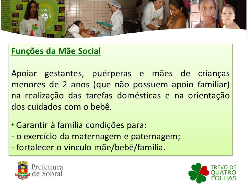 Funções da Mãe Social