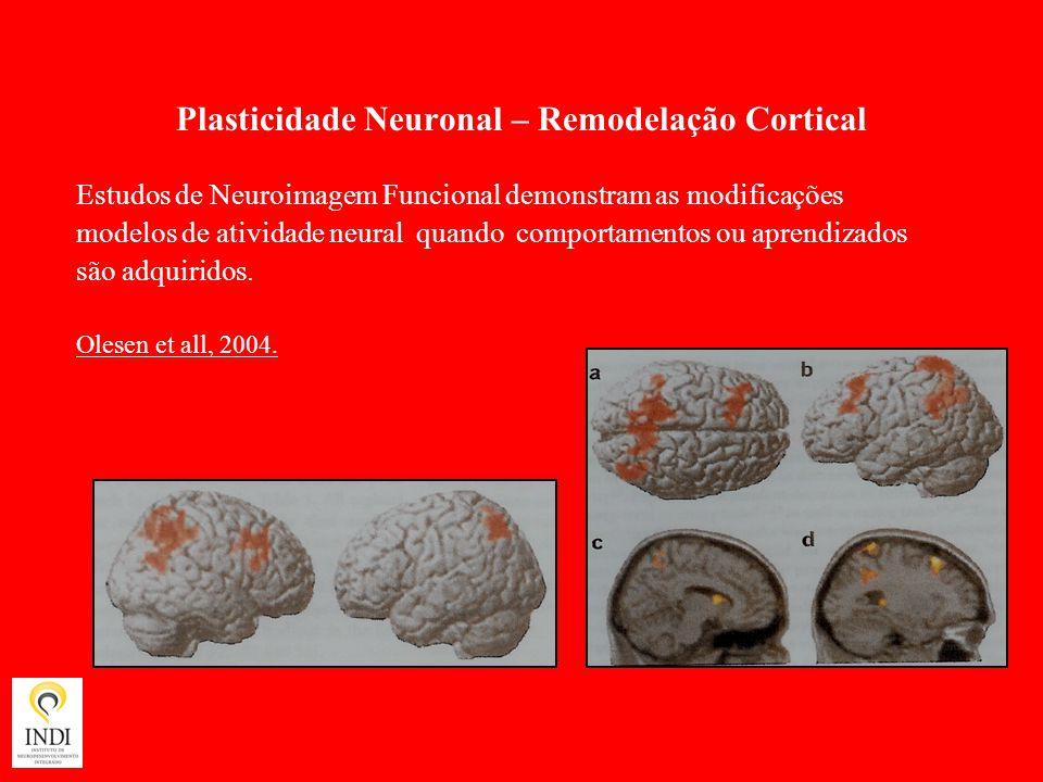 Plasticidade Neuronal – Remodelação Cortical
