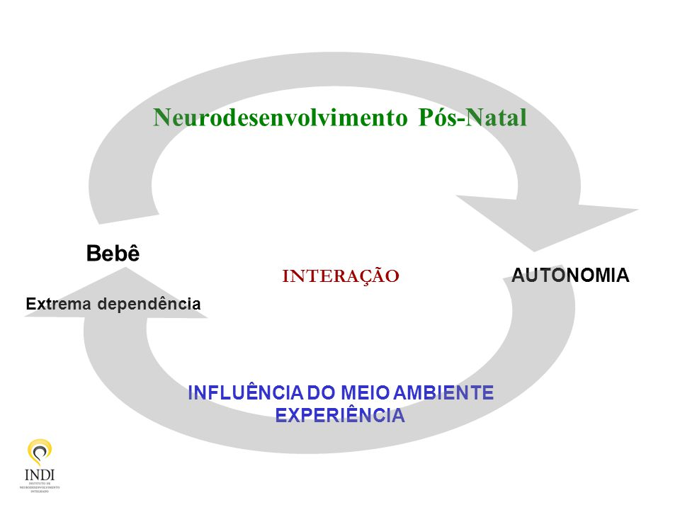 Neurodesenvolvimento Pós-Natal