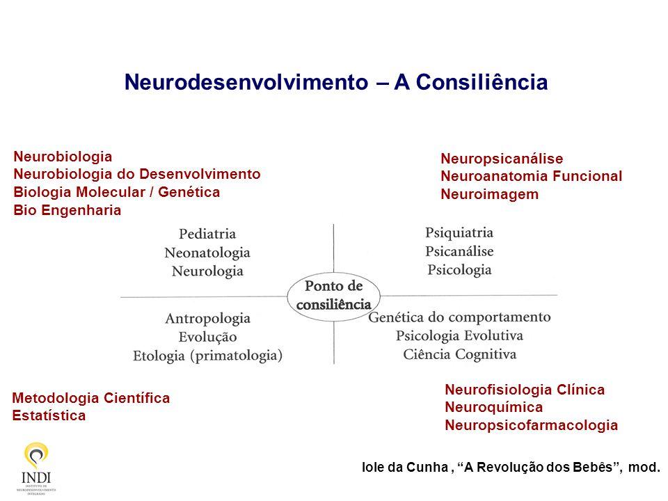 Neurodesenvolvimento – A Consiliência