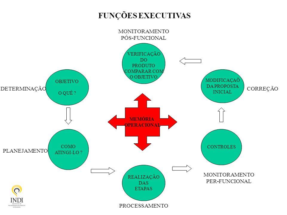 FUNÇÕES EXECUTIVAS MONITORAMENTO PÓS-FUNCIONAL DETERMINAÇÃO CORREÇÃO