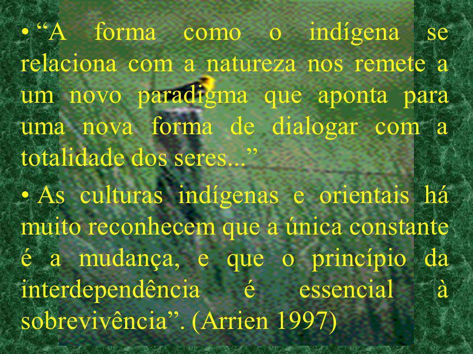 A forma como o indígena se relaciona com a natureza nos remete a um novo paradigma que aponta para uma nova forma de dialogar com a totalidade dos seres...