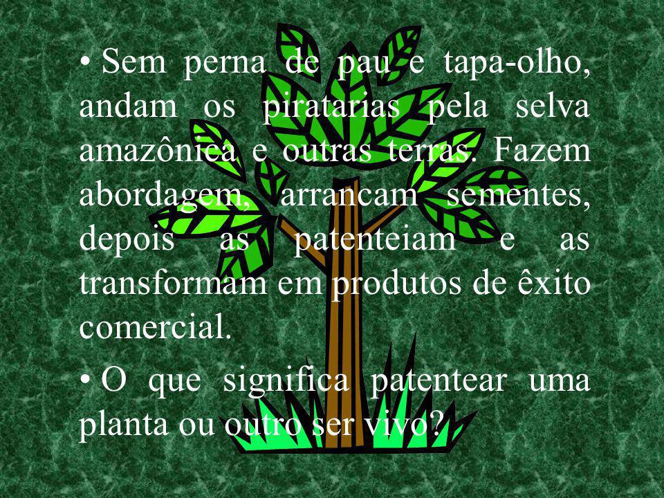 Sem perna de pau e tapa-olho, andam os piratarias pela selva amazônica e outras terras. Fazem abordagem, arrancam sementes, depois as patenteiam e as transformam em produtos de êxito comercial.