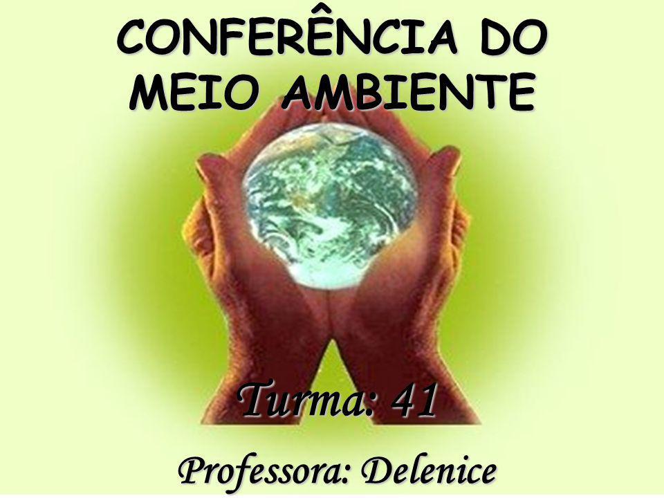 CONFERÊNCIA DO MEIO AMBIENTE