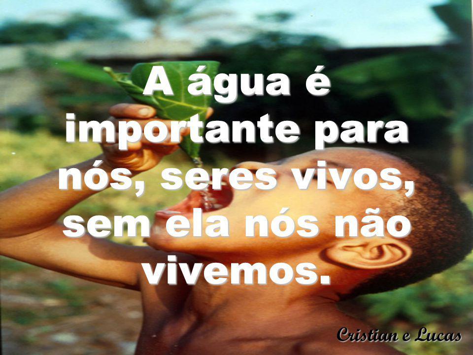 A água é importante para nós, seres vivos, sem ela nós não vivemos.
