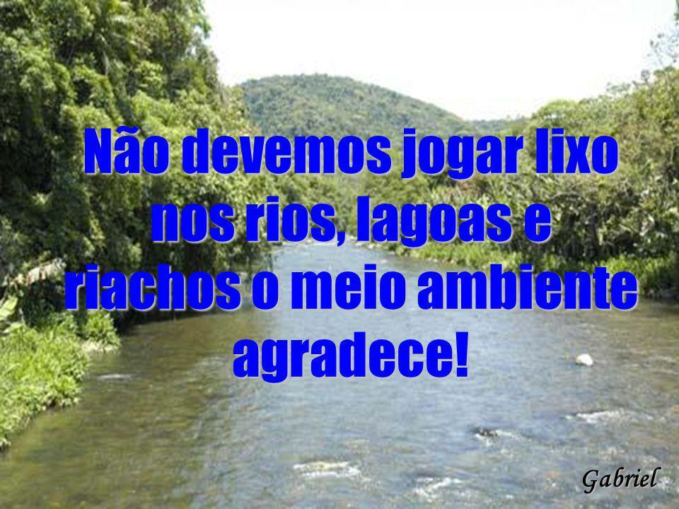 Não devemos jogar lixo nos rios, lagoas e riachos o meio ambiente agradece!