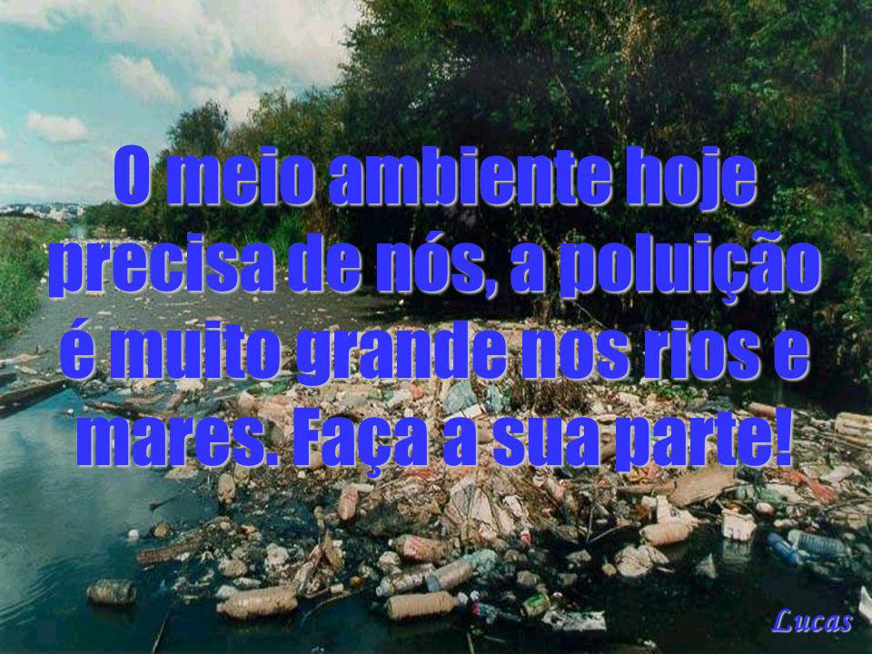 O meio ambiente hoje precisa de nós, a poluição é muito grande nos rios e mares. Faça a sua parte!