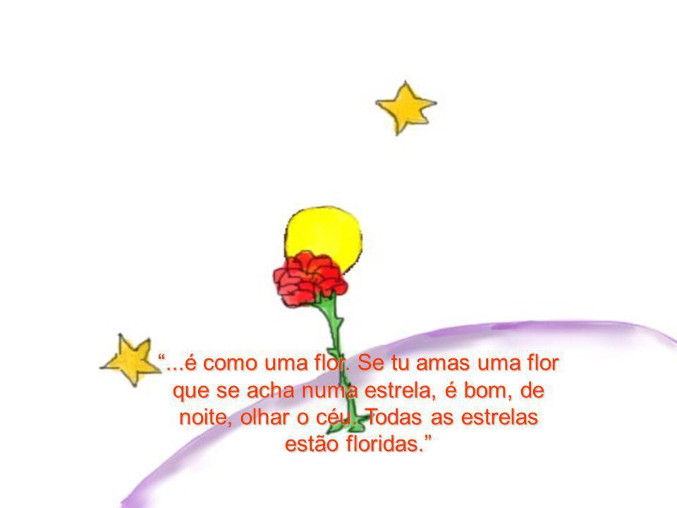 ...é como uma flor. Se tu amas uma flor que se acha numa estrela, é bom, de noite, olhar o céu.
