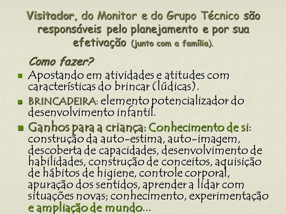 Visitador, do Monitor e do Grupo Técnico são responsáveis pelo planejamento e por sua efetivação (junto com a família).