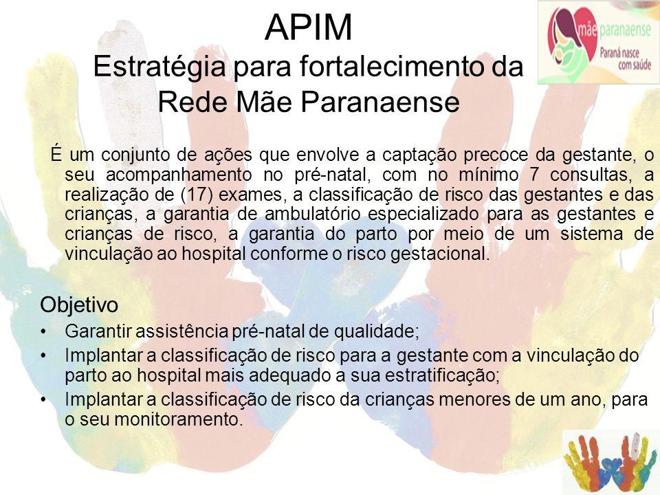 APIM Estratégia para fortalecimento da Rede Mãe Paranaense