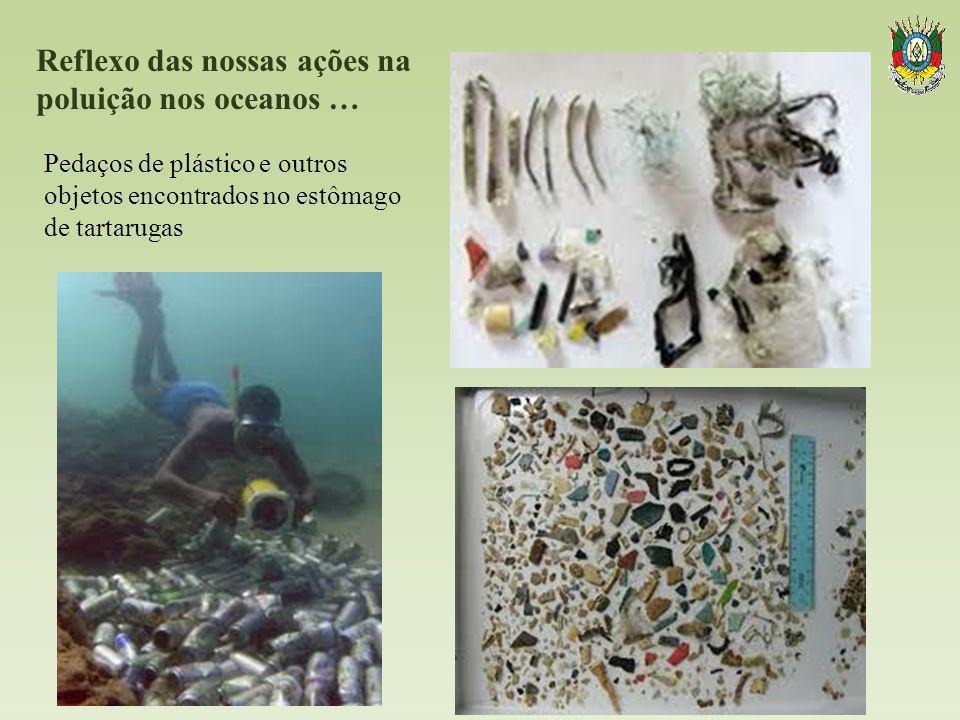 Reflexo das nossas ações na poluição nos oceanos …