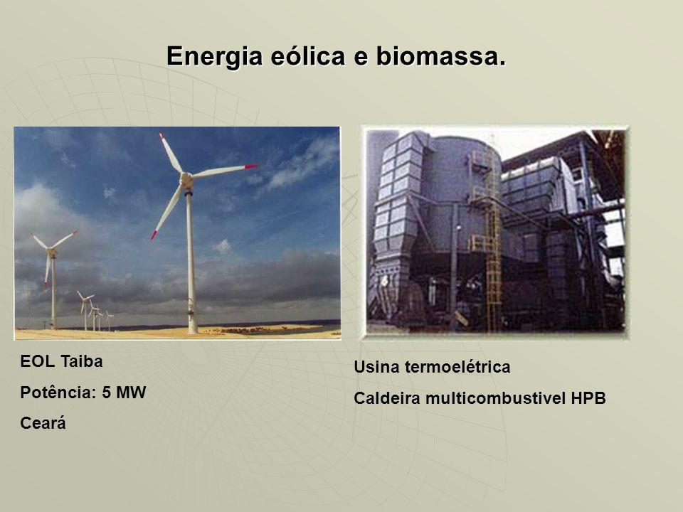 Energia eólica e biomassa.