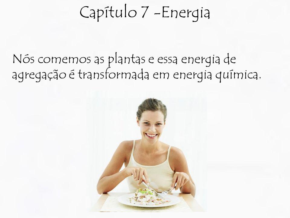 Capítulo 7 -Energia Nós comemos as plantas e essa energia de agregação é transformada em energia química.