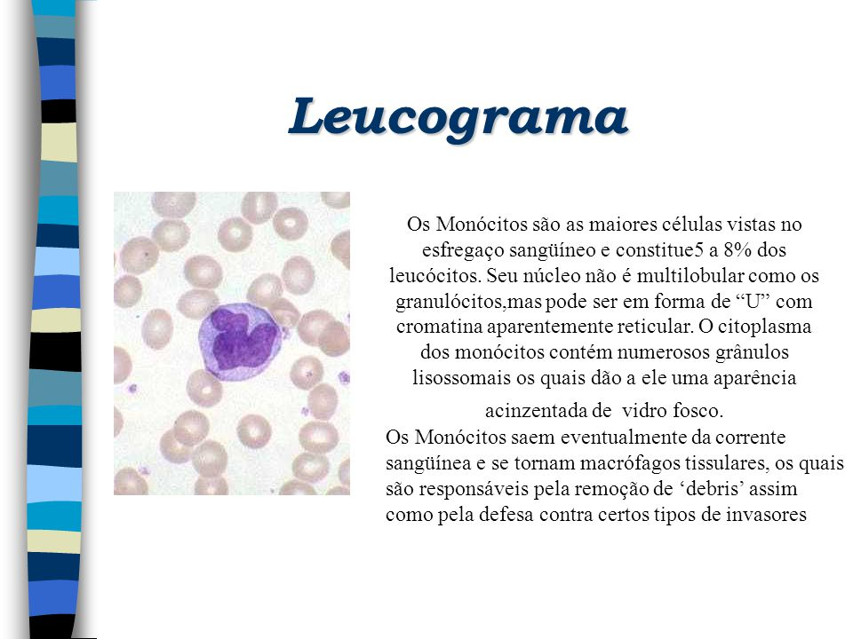 Leucograma