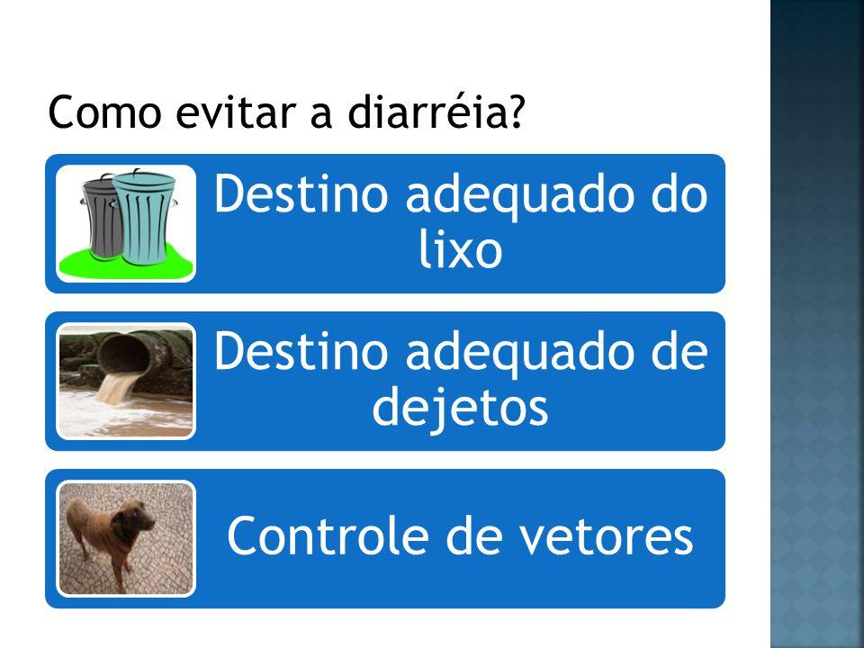 Como evitar a diarréia Destino adequado do lixo