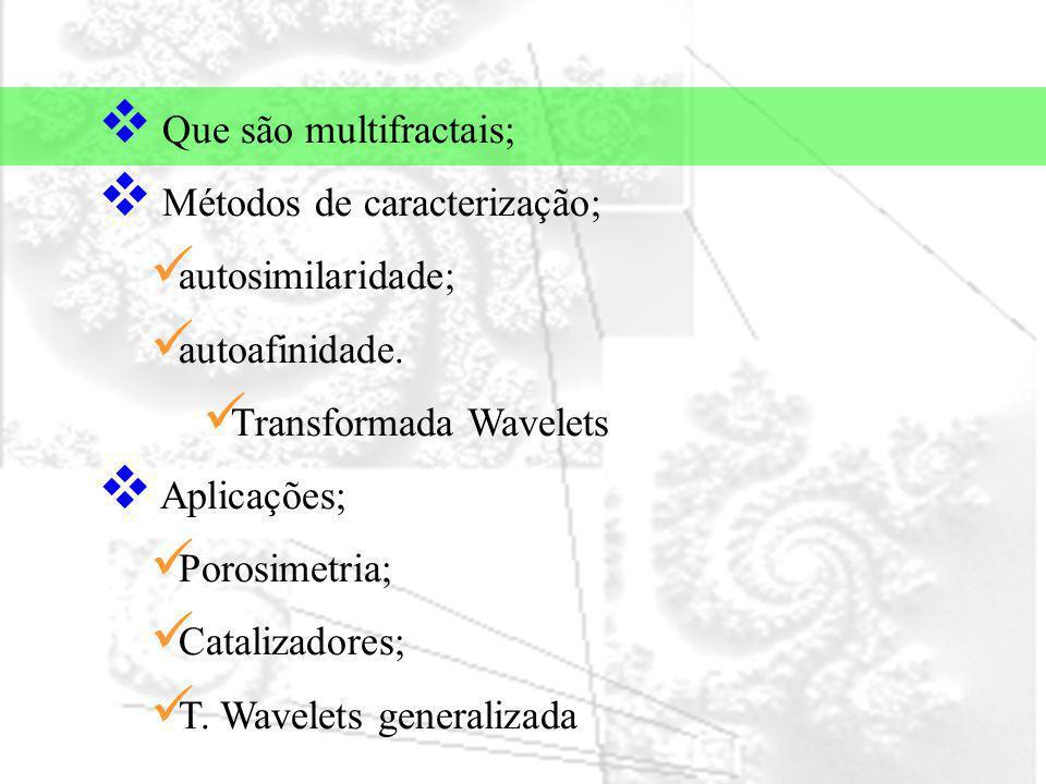 Que são multifractais;