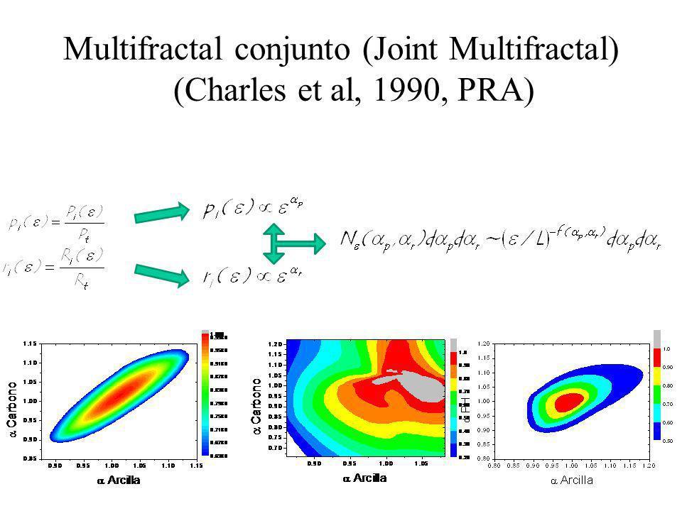 Multifractal conjunto (Joint Multifractal) (Charles et al, 1990, PRA)