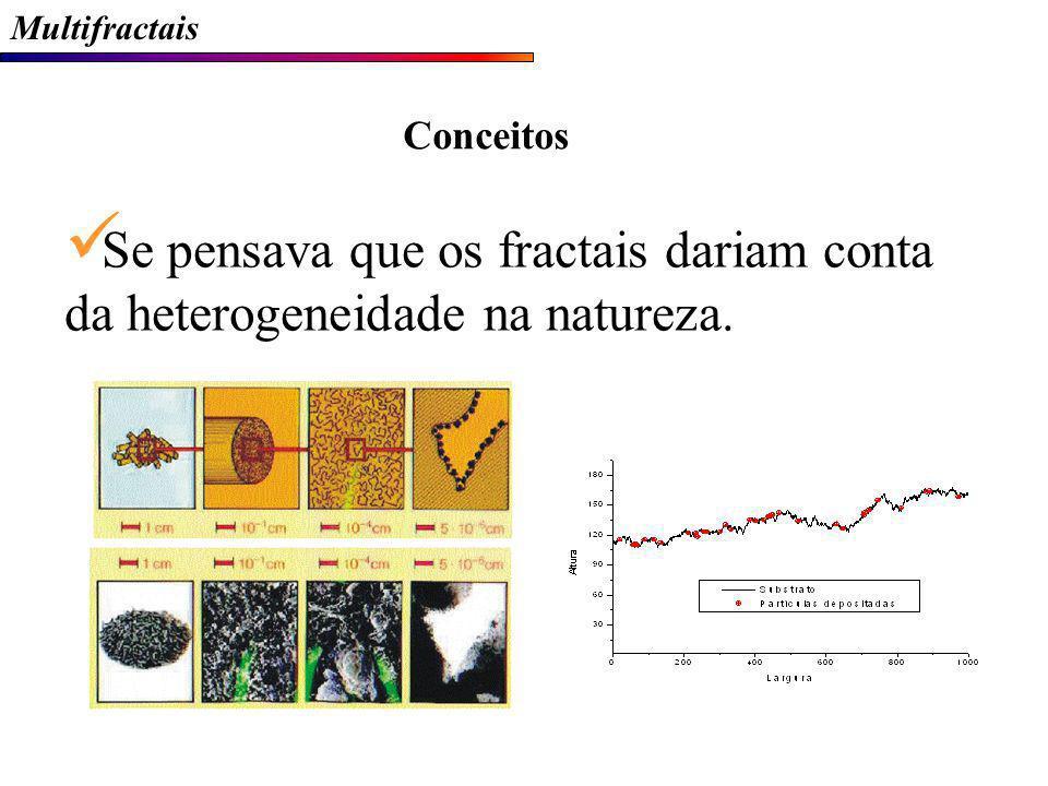 Multifractais Conceitos Se pensava que os fractais dariam conta da heterogeneidade na natureza.