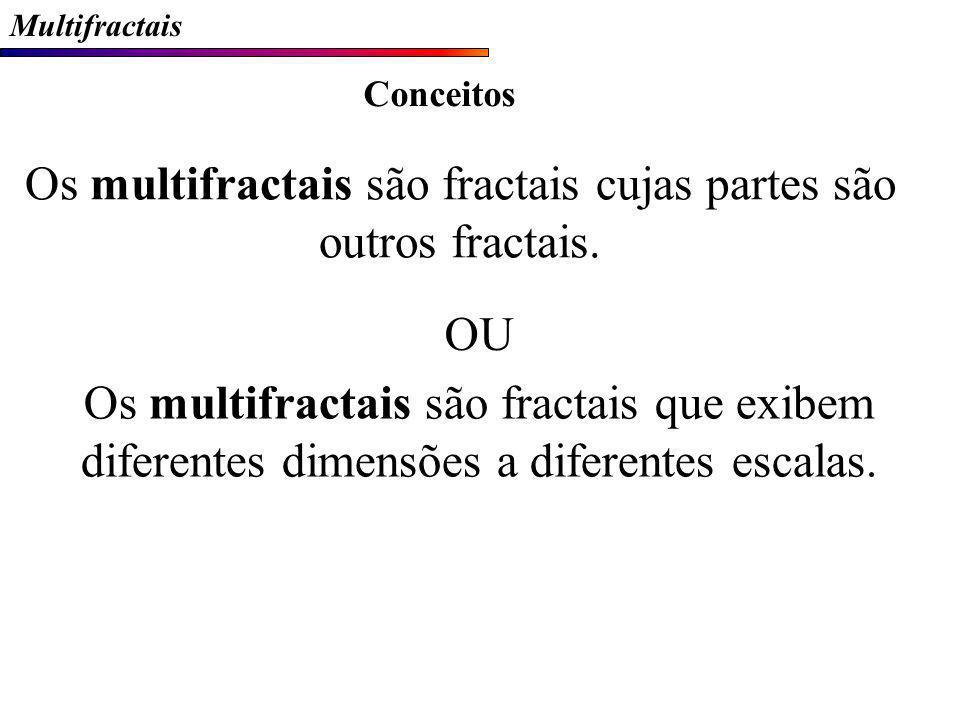 Os multifractais são fractais cujas partes são outros fractais.
