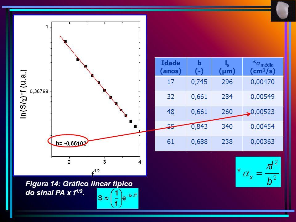 Figura 14: Gráfico linear típico do sinal PA x f1/2.