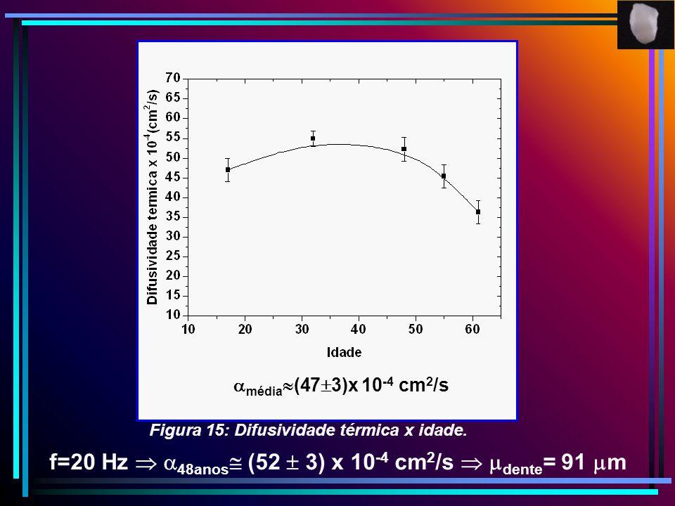 f=20 Hz  48anos (52  3) x 10-4 cm2/s  dente= 91 m