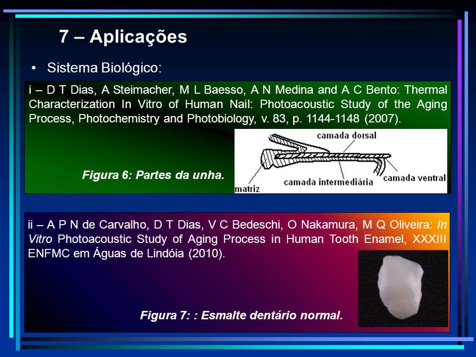 7 – Aplicações Sistema Biológico: