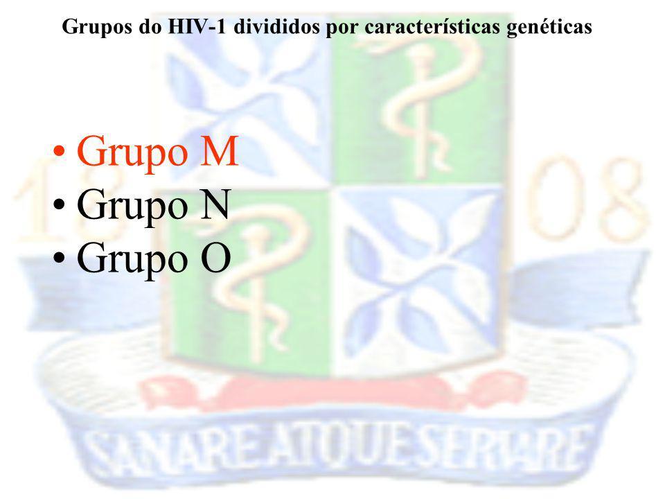 Grupos do HIV-1 divididos por características genéticas