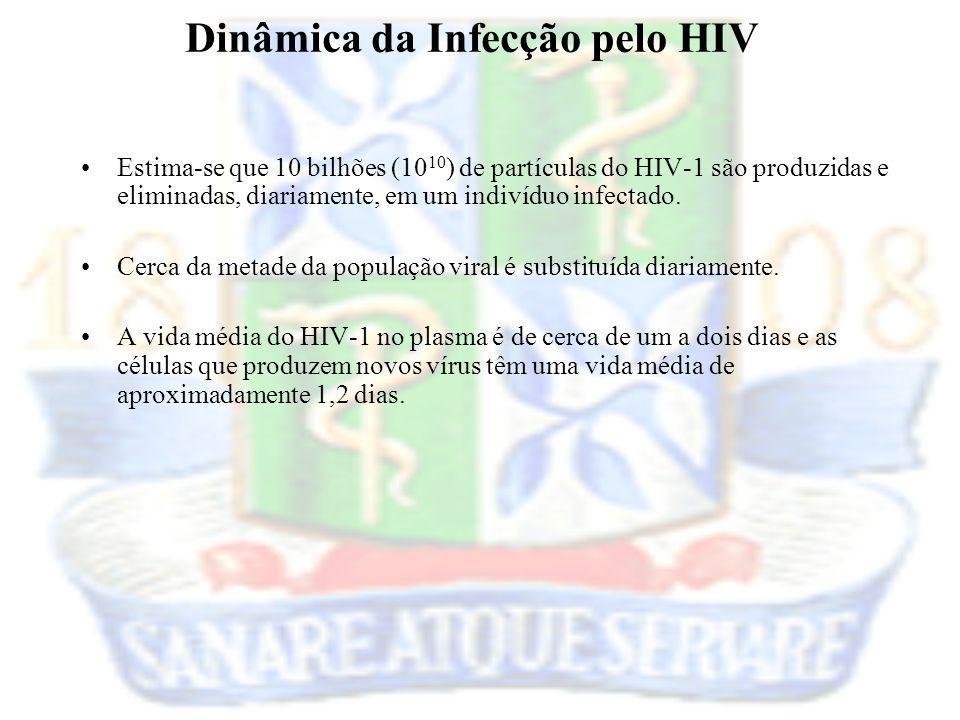 Dinâmica da Infecção pelo HIV