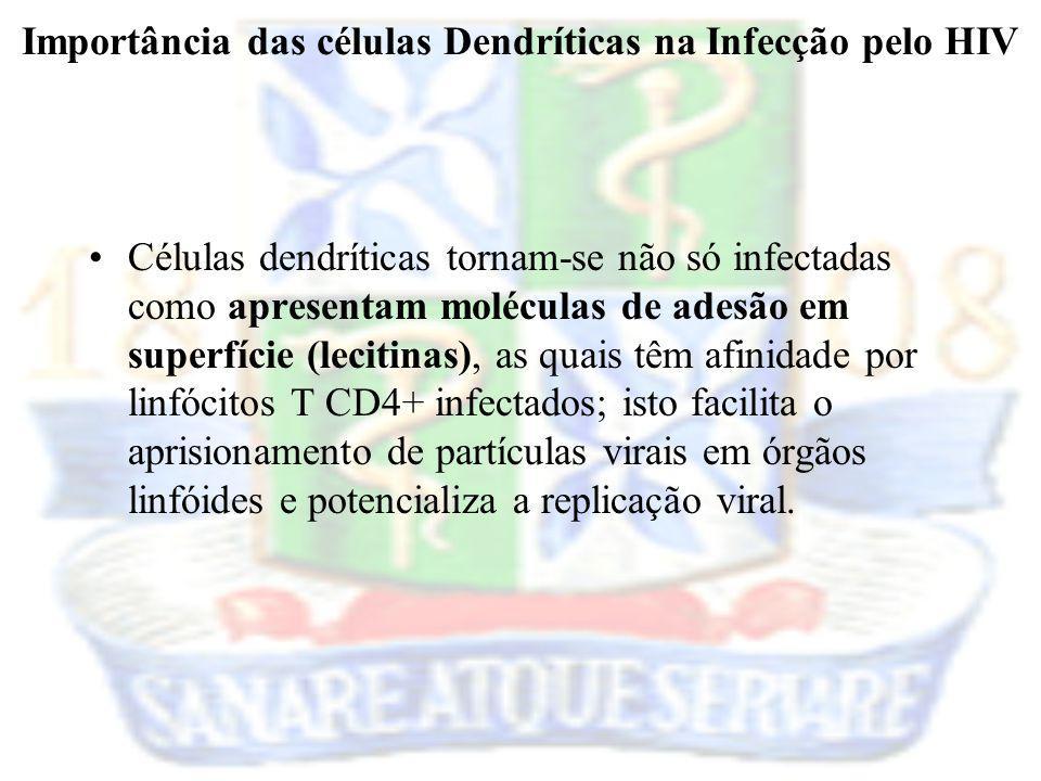 Importância das células Dendríticas na Infecção pelo HIV