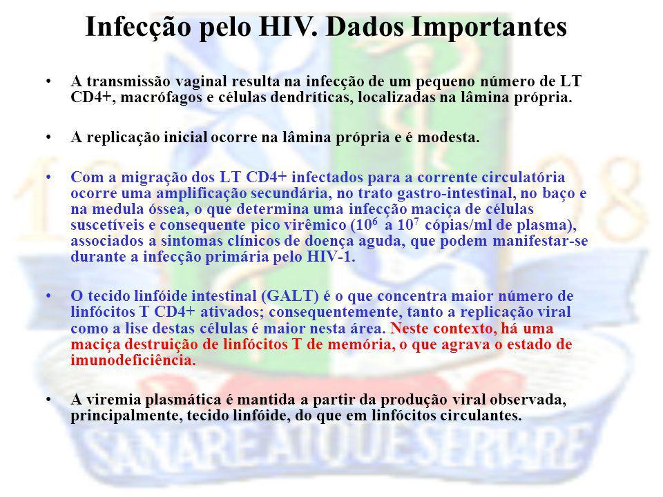 Infecção pelo HIV. Dados Importantes