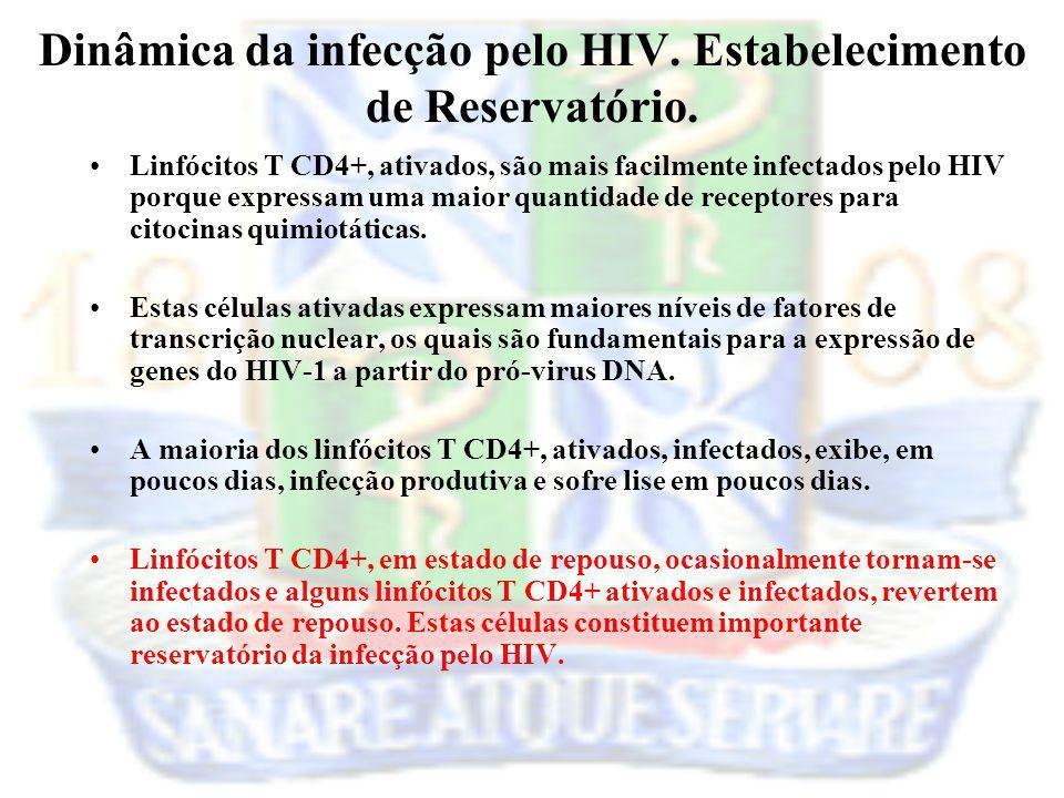 Dinâmica da infecção pelo HIV. Estabelecimento de Reservatório.