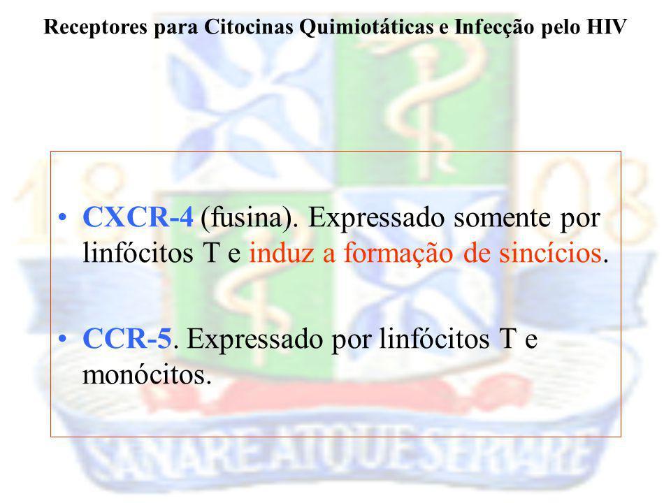 Receptores para Citocinas Quimiotáticas e Infecção pelo HIV