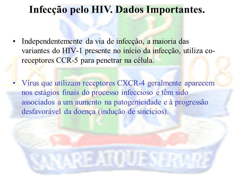 Infecção pelo HIV. Dados Importantes.