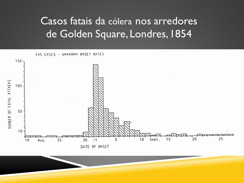 Casos fatais da cólera nos arredores de Golden Square, Londres, 1854