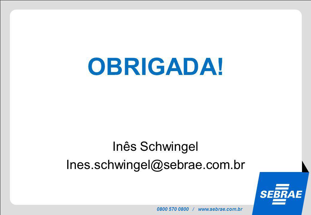 OBRIGADA! Inês Schwingel Ines.schwingel@sebrae.com.br