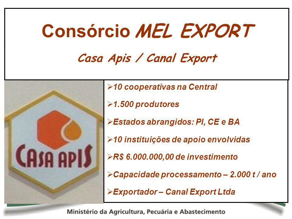 Casa Apis / Canal Export