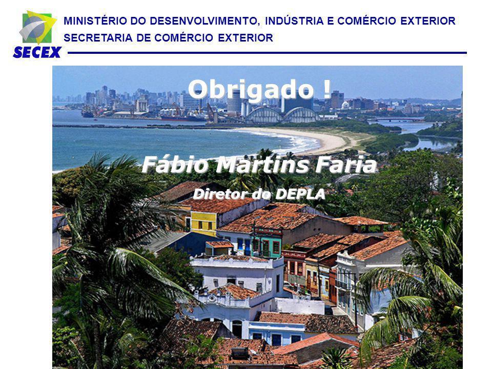 Obrigado ! Fábio Martins Faria Diretor do DEPLA