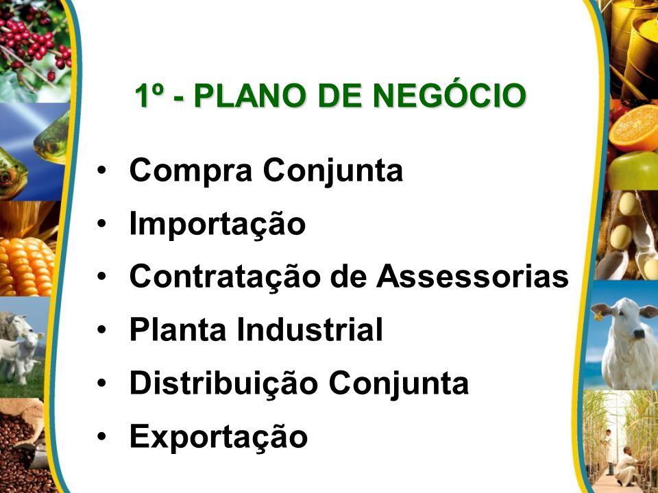 1º - PLANO DE NEGÓCIO Compra Conjunta. Importação. Contratação de Assessorias. Planta Industrial.