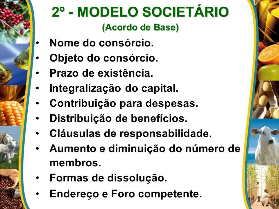 2º - MODELO SOCIETÁRIO Nome do consórcio. Objeto do consórcio.