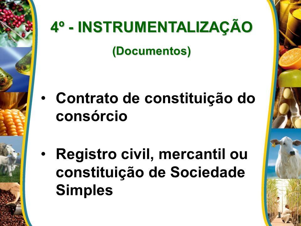4º - INSTRUMENTALIZAÇÃO