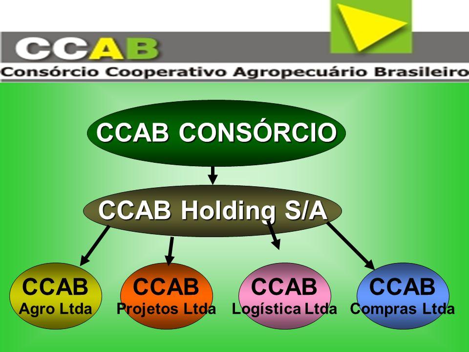 CCAB CONSÓRCIO CCAB Holding S/A