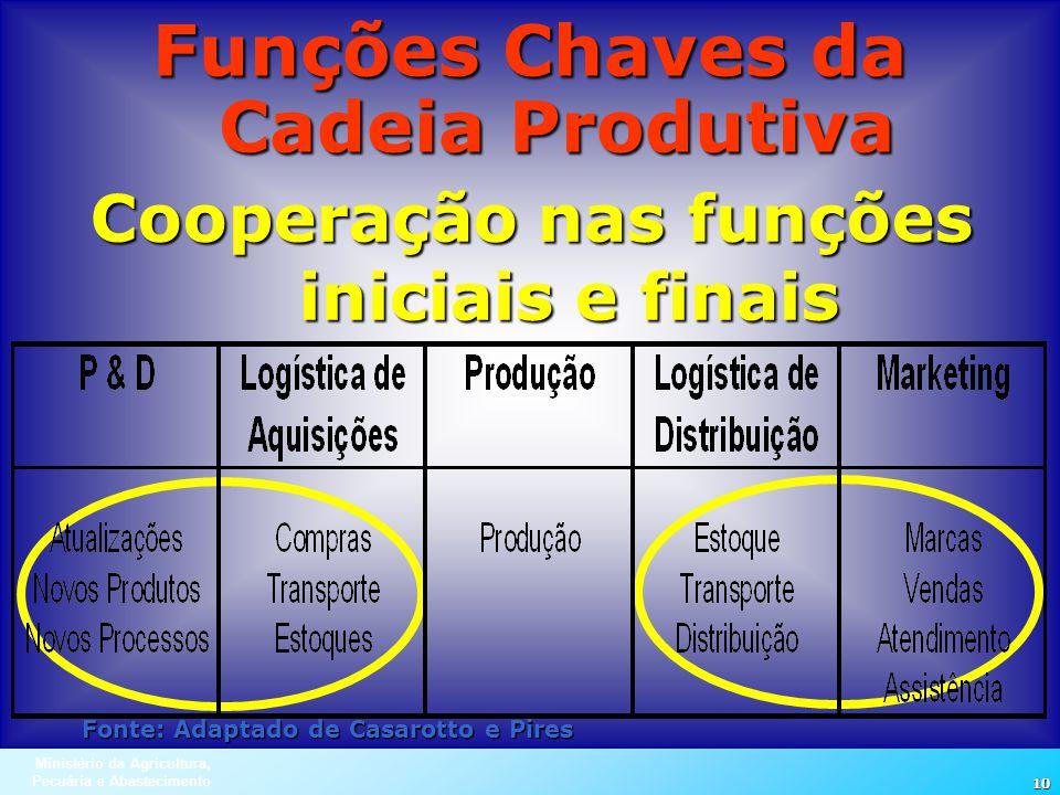 Funções Chaves da Cadeia Produtiva