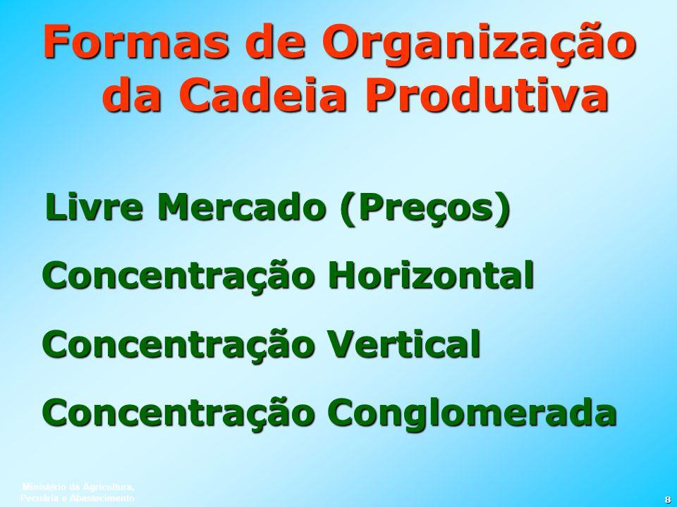 Formas de Organização da Cadeia Produtiva