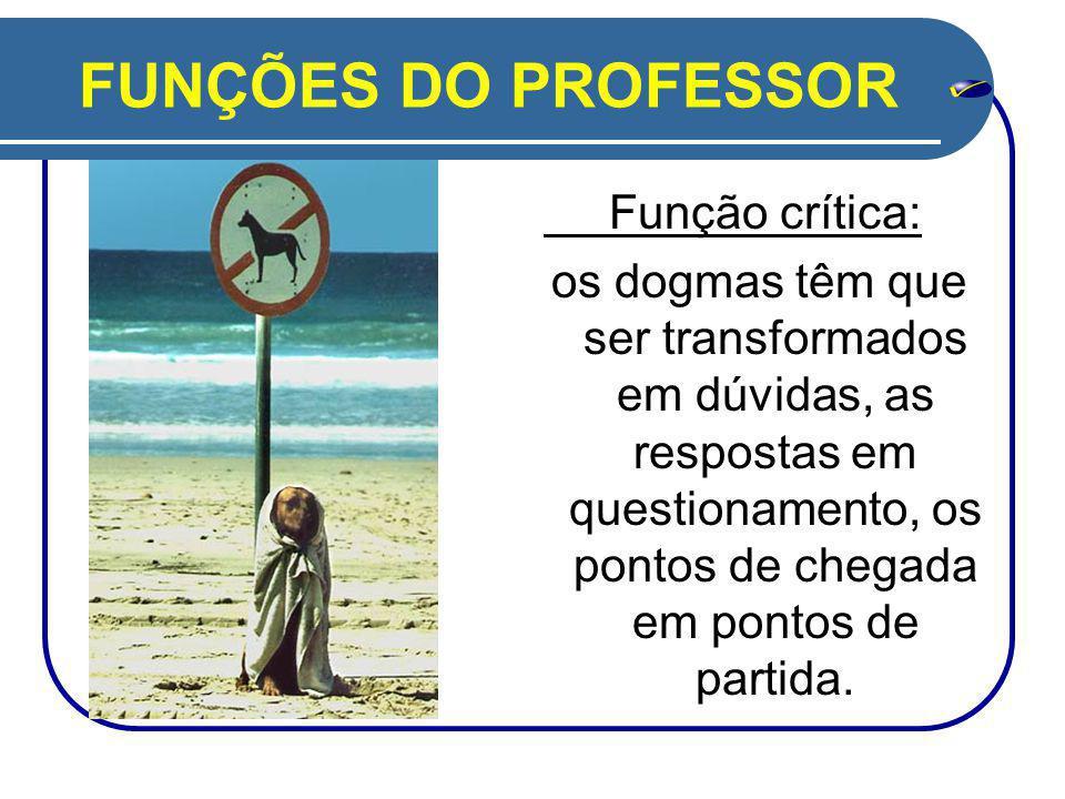 FUNÇÕES DO PROFESSOR Função crítica: