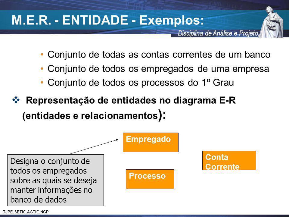 M.E.R. - ENTIDADE - Exemplos:
