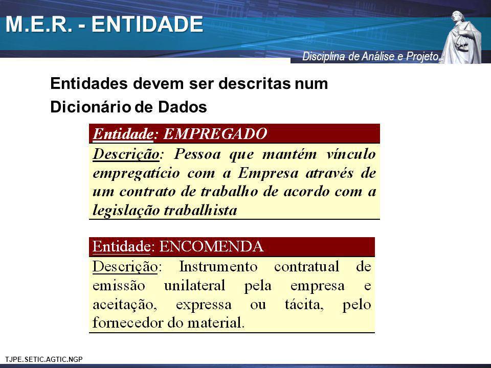 M.E.R. - ENTIDADE Entidades devem ser descritas num